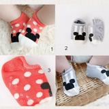 vớ cotton Hàn Quốc hoạt hình  Size:  3-30 tháng